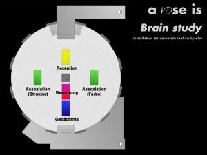 Brain study - räumliches Modell